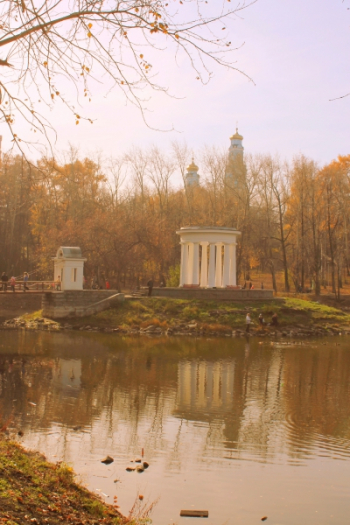 Шаехова Анастасия