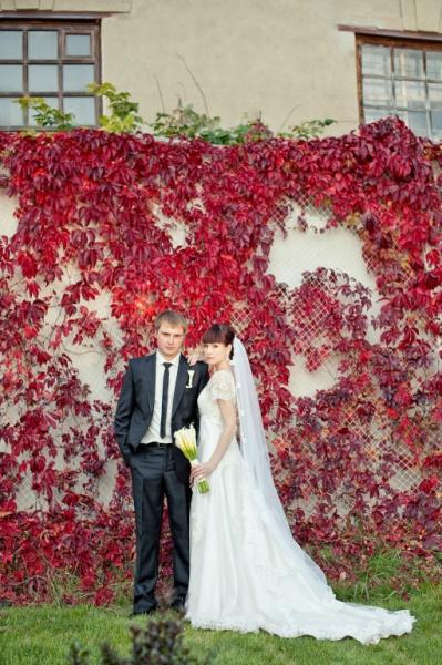 5287 Свадьба Арзамас..., Фотография Фотографа Замотаева Алёна в Арзамасе