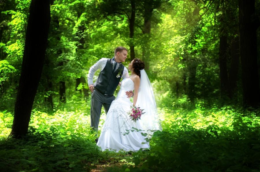 5763 свадебная фотосъемка..., Фотография Фотографа Алексеева Марина в Самаре