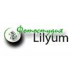 Lilyum