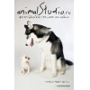 animalStudio